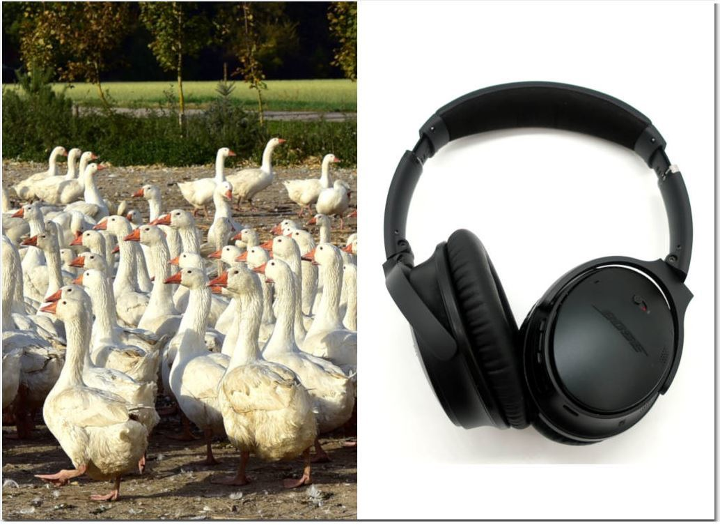 Why noise cancelling headphones don't block voices