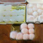 foam vs wax vs silicone earplugs